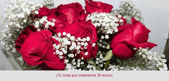Docena de rosas por 30€