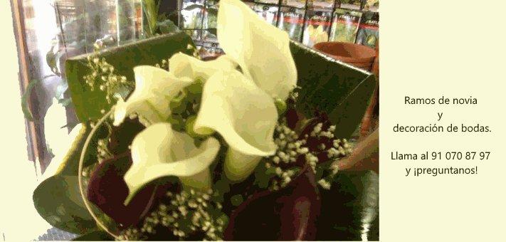 Ramos de novia y decoración de bodas